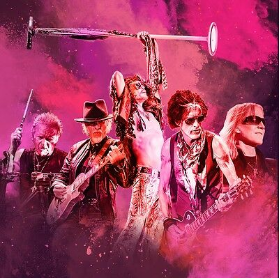 Entrada general pista golden AEROSMITH Madrid 29 JUNIO
