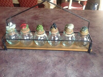 x6 kitchen herb containers including stand