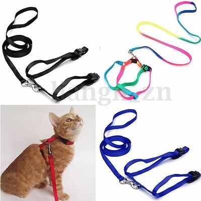 Nylon Laisse Corde Chien Chat Animal Harnais Collier Jogging Promenade Réglable