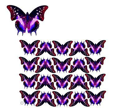 TRANSPARENT FILM BUTTERFLY #13 for making suncatchers, scrapbooking, cards etc