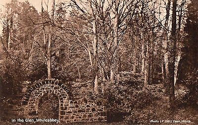 IN THE GLEN WHITEABBEY CO. ANTRIM IRELAND POSTCARD by COON for H. QUIERY