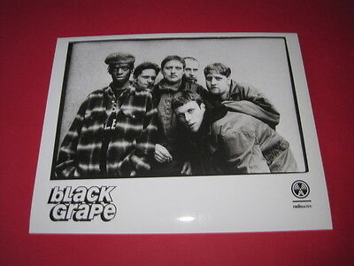 BLACK GRAPE  10 x 8 inch promo photo photograph #F065_3379