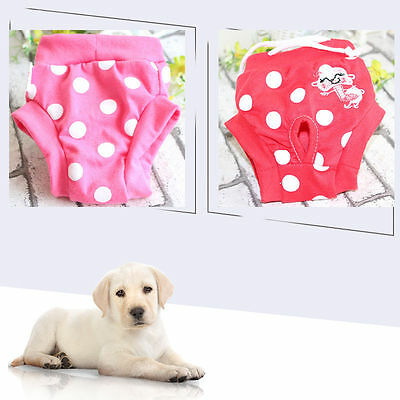 Small Female Dog Cat Pet Panties Panty Nappy Diaper Underpants Shorts Clothing