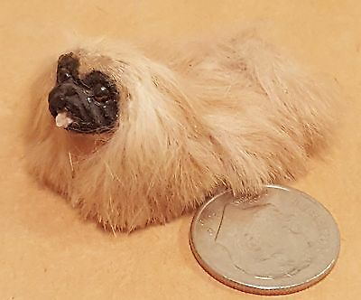 Annie Willis Miniature Pekingese Teeny Tiny Puppy Dog Dollhouse Miniature