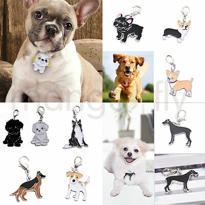 Personalised Pet Tags Collar Pet Identity ID Card Decorate for Dog Cat Various