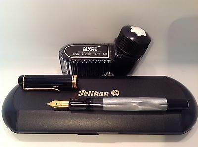 Silver Grey Pelikan Piston Syphon Fill Fountain Pen Hard Case MontBlanc Inkwell