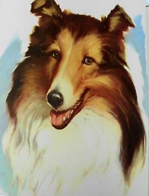VINTAGE ROUGH HAIRED COLLIE DOG Art Print by Wesley Dennis