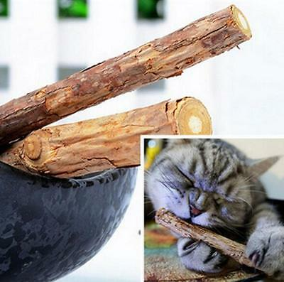 Stick Treat Molar Polygama Natural Pet Cat Matatabi Toy Chew 1 Bag 5PCS Catnip
