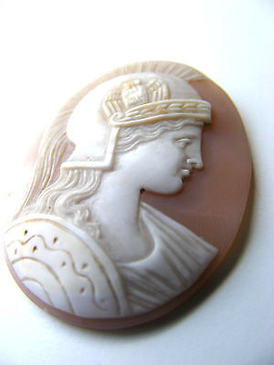 Antique Roma Depicted As Athena Cameo Eagle