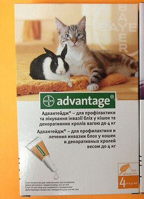 4 pack (tubes) advantage for small Cats under/up 9 lbs (4kg) orange 40
