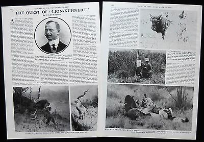 Wilhelm Kuhnert German Painter & Author Animal Artist Illustrated Article 1973