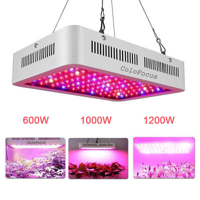 Full Spectrum LED Grow Light 300W 600W 1000W 1200W   LED Lamp for Indoor Plants