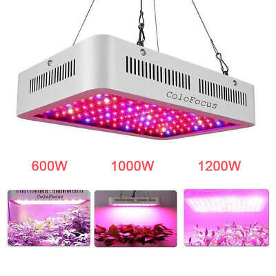 Full Spectrum LED Grow Light 600W 1000W 1200W LED Grow Lamp for Indoor Plant Veg