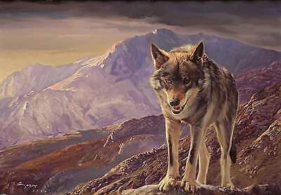 "Wolf painting Fine print on canvas - ""The Last Wolf"" - 93 x 65 cms. Wolves"