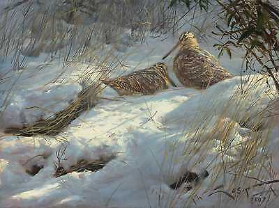 """Woodcock Fine print on canvas. - """"Woodcocks in the snow"""""""