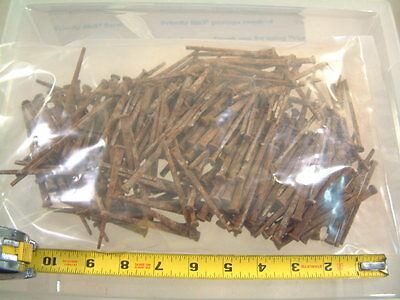 Lot of 285 FIVE (5) LBS. Antique Square Nails Three 3""