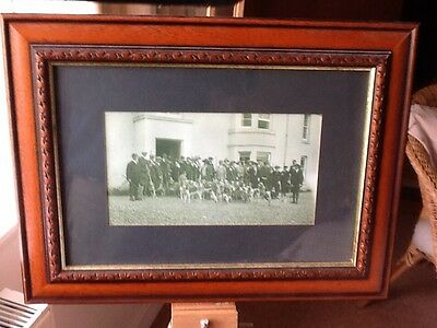 """Otter Hounds Antique Photograph""""Border Counties Otter Hounds"""" circa 1895"""