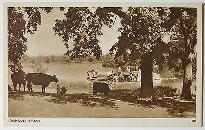 SALHOUSE BROAD, Norfolk - 1950's - Vintage postcard