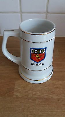 South  Africa Club Cricket Beer Mug Western Province Cricet Club