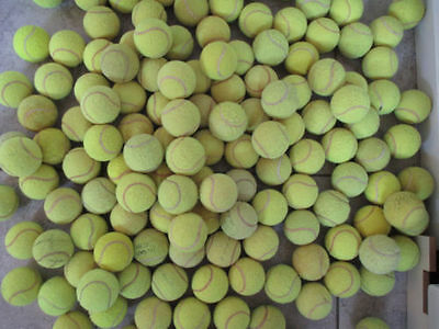 30 Used Tennis Balls For Dogs-Machine Wasched
