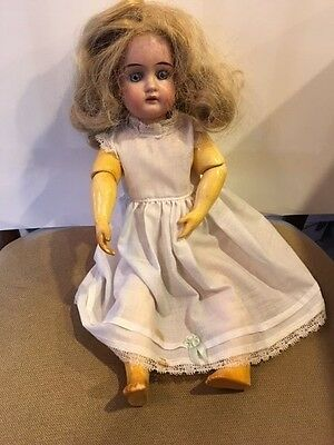 E U STEINER 14 Inch DOLL ANTIQUE  Marked Body Blue Eyes Free Shipping