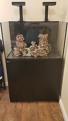 Red sea reefer 250 deluxe complete set up