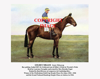 GOLDEN MILLER and Gerry Wilson: 1934 Grand National 10x8 colour, fully captioned