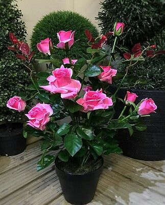 Artificial Pink Rose Bush 10 Flowers Plant Buds Plastic Stem Black Starter Pot