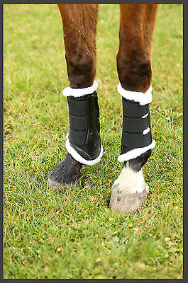 White Equestrian Dressage Brushing Boots Black Padded Horse XS S M L XL