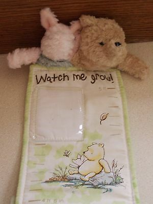 Disney Classic Winnie Pooh Watch Me Grow Milestone Marker and Picture Pockets