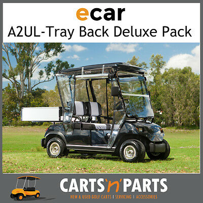 A2UL Tray Back 2 seat Golf Cart Deluxe Full Package