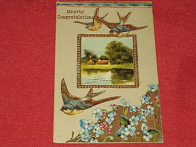 1911 Hearty Congratulations Postcard #1649 Embossed Blue Birds Posted VG
