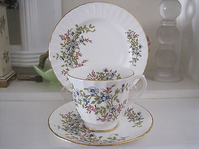 Pretty Duchess Fine Bone China Trio ~ Tiny Blue And Pink Flowers