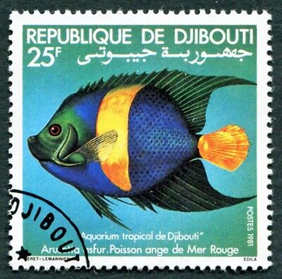 DJIBOUTI 1981 25f SG808 used NG Djibouti Tropical Aquarium Fish #W29