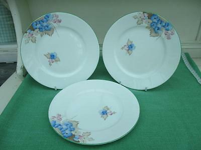 Shelley Fine Bone China TEA PLATES Lovely Floral Pattern