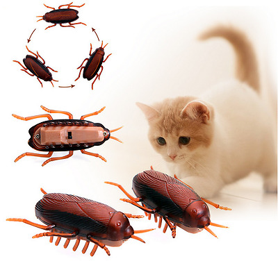 1x Funny Electronic Cockroach Pet Cat Dog Kitten Interactive Training Play Toy