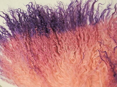 "Tibetan Lambskin Mohair Coral Rose Purple Gradient 10 x 4"" Doll Hair"