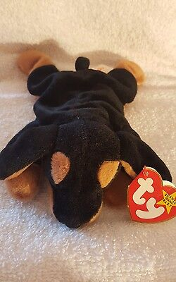 Beanie Baby Doby 1993 Dog w/ Tag ERRORS TY RARE PVC NEW RETIRED