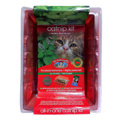 Mr Fothergill's Catnip Kit Kitten Cat Playful Highly Perfumed Treat Grow