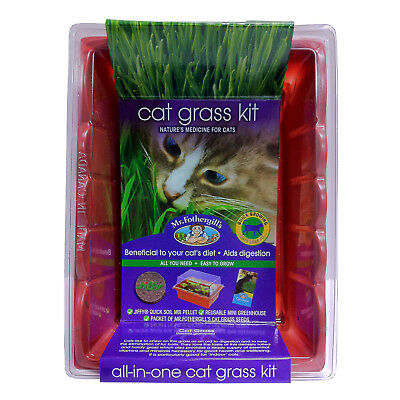 Mr Fothergill's Cat Grass Kit Kitten Beneficial Natural Medicine Sprouting