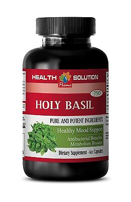 Brain Supplement - Holy Basil Extract 745mg - Tulsi Holy Basil Pills 1B