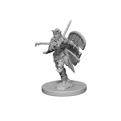 Human Female Paladin WZK72607 Wizkids New in Box