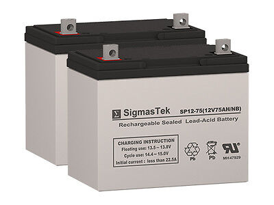 Fortress Scientific 655 GP24 Replacement Batteries by SigmasTek (Set of 2)
