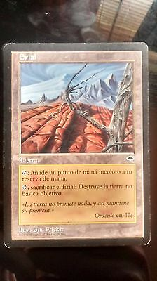 Wasteland (Spanish) - Magic: The Gathering - Tempest