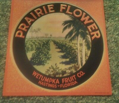 PRAIRIE FLOWER Vintage Hastings Florida Citrus Crate Label ORIGINAL 1930's