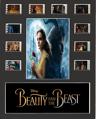 Beauty And The Beast replica Film Cell Presentation 10 x 8 Mounted 10 cells