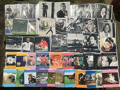 Job Lot of 200+ Mixed Photo Greeting Cards  Film Sport Music Animal Fun Baby Art
