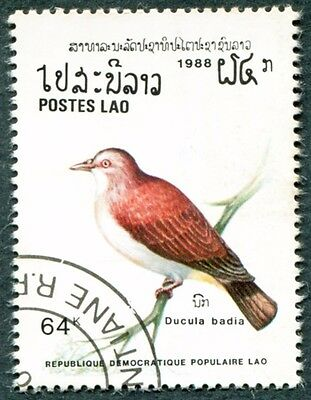 LAOS 1988 64k SG1098 used NG Mountain imperial pigeon Ducula badia #W31