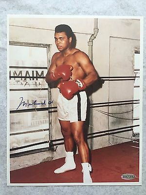 Muhammad Ali In Famous Miami 5Th Street Gym Signed Photo - Steiner Coa
