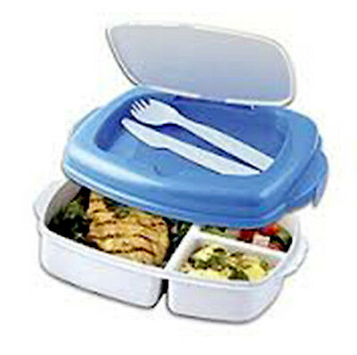 Lunchbox Plastic Food Box With Freezable Lid Stay Fresh Dinner Picnic School